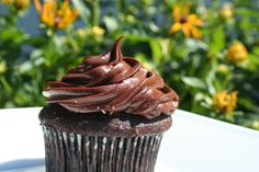 Devil's Food Cupcake with Chocolate Fudge Frosting