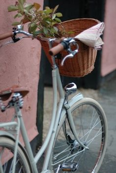 bike + flowers = loveliness