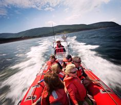 Cape Breton, Cultural Experience, Cultural Diversity, Whale Watching, Coastal, Fair Grounds, Journey, Tours, Culture