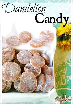 Dandelion Candy l Foraged dandelions, honey, herbs and lemon make a healthier treat l Homestead Lady.com