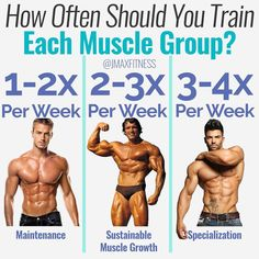 HOW OFTEN SHOULD YOU TRAIN A MUSCLE GROUP by - Many of my posts lately have been teaching you how to build specific body parts quickly. - And one thing I say across the board on all of those posts is that you should train that muscle per Gain Muscle, Build Muscle, Muscle Mass, Fitness Tips, Fitness Motivation, Health Fitness, Crossfit, Ectomorph Workout, Workout Splits