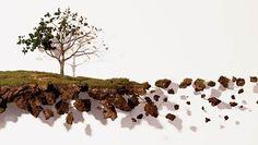JORGE MAYET. O artista cubano apresenta seis obras na individual Sobre Todas as Coisas. Trata-se de esculturas que retratam a natureza, com árvores e plantas feitas de tecido, fios de cobre, papel machê e linhas.