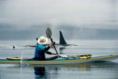 Best Places For Kayaking