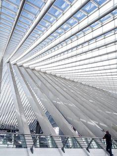 liege-guillemins-tgv-railway-station-in-belgium-designed--by-the-architect-Santiago-Calatrava-(2)