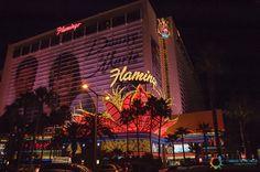 Las Vegas, la città che non dorme mai. Tutte le foto della giornata passata tra casinò e centri commerciali.