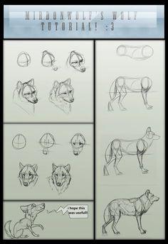 Mirdonwolf's basic wolf tutorial by =The-TrollMir on deviantART