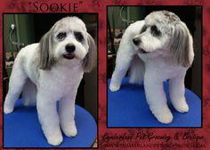 Sookie's looking like hot stuff now!!