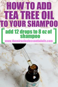 How Many Drops of Tea Tree Oil Should I Put in My Shampoo? You've learned about tea tree oil and you're ready to add it to shampoo. Now are you wondering, exactly how many drops of tea tree oil should I put in my shampoo? We'll get into the exact measurem Tea Tree Oil Lice, Tea Tree Oil Hair, Tea Tree Oil Shampoo, Tea Tree Oil Uses, Lice Shampoo, Oils For Dandruff, Essential Oils For Headaches, Oil Benefits, Soap Recipes