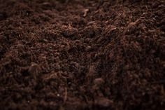 Soil or dirt section isolated on white background Veggie Patch, Garden Nursery, White Background Photo, Garden Supplies, Botany, Compost, How To Dry Basil, Herbs, Stock Photos