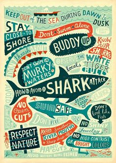 Shark typography illustration