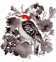 Red Bellied Woodpecker by Mai Autumn