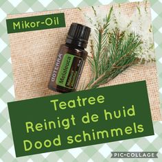 Meer informatie ontvangen over gebruik van etherische oliën ? Mail mij info@mikor-oil.nl of bezoek eens mijn website Www.mikor-oil.nl Melaleuca, Doterra, Oil, Website, Butter, Doterra Essential Oils