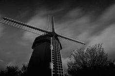 Scenery with the windmill #tanakaakira #tasogare
