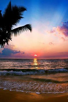 Bonjour sur un lever du soleil