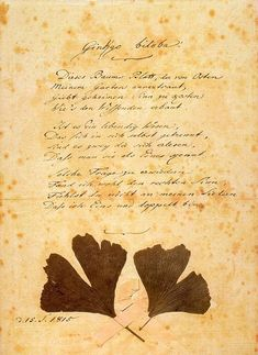"""Poem by Goethe, """"Ginkgo Biloba."""" Copy of the original of Goethe's poem with ginkgo-leaves pasted on it by Goethe himself. September 15, 1815.   Excerpt: """"Is this a single thing that is in itself divided? Or two things that to the world appear as one? ... In my songs, do you not sense that I am both one and double?"""""""