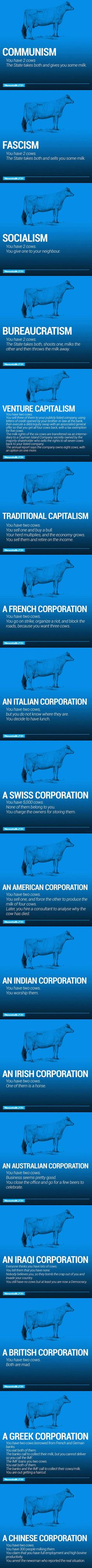 Click to view image: 'f3f_1464388689-funny-economy-explained-cows-capitalism_1464388790.jpeg'