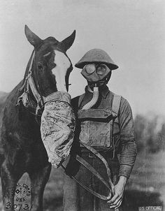 U.S Official and his mount both with gas masks . Well, the one of the mount isn't really a gas mask but...