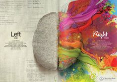 the left and right brain - logic and creativity