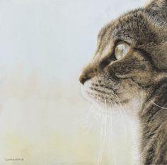 Кошки Сьюлен Росс (Sueellen Ross)