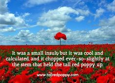 It was a small insult, but it was cool and calculated, and it chopped ever-so-slightly at the stem that held the tall red poppy up.