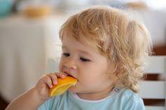 Finita la prima parte dello svezzamento o alimentazione complementare all'allattamento, dai 6 ai 12 mesi, possiamo decisamente aiutare i bambini ad avvicinarsi al nostro cibo in modo sempre più graduale e a mangiare cibo non frullato, ma a pezzettini. Non solo autosvezzamento, quindi, ma proprio una serie di ricette dedicate ai bambini di 1 anno, per favorirne la masticazione e dunque la corretta deglutizione, che abbiamo detto essere fondamentali per lo sviluppo sano del bambino. Come se...