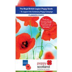 British Legion Flanders Poppy Seeds | Rooms | DIY at B&Q