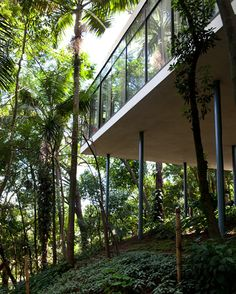 http://linabobarditogether.com/2012/06/16/intimate-world-lina-bo-bardi/