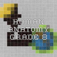 Human Anatomy-Grade 8