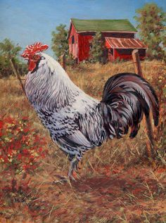 Gallina Crochet, Rooster Art, Rooster Painting, Rooster Decor, Chicken Pictures, Arte Country, Chickens And Roosters, Pet Chickens, Chicken Painting