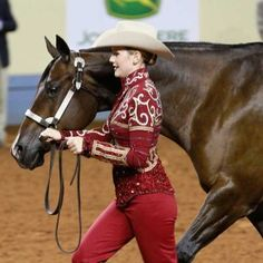 A Judge's Perspective on Horse-Showing Trends – America's Horse Daily