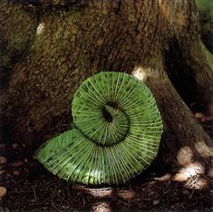 Andy Goldsworthy is an outdoor artist who works with the landscape and found objects in that landscape.