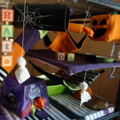 It's always fun to decorate for Halloween, so this year try decorating your rats' cage! It can be easy and inexpensive if you get your materials from thrift stores and dollar stores. There are lots of different Halloween decorations that can be used...