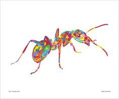 Resultado de imagen de ant art Ant Art, Ants, Insects, Image, Ant