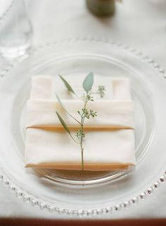 Nice quality plastic plates, no silverware, but a nice napkin and herb