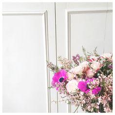 Regardez cette photo Instagram de @violette_sbep • 432 mentions J'aime