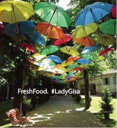 FreshFood. Lady Gisa 2017