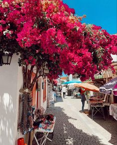 Beautiful Places, Street View, Street Style, Lights, Nice, Roads, Flowers, Clothing, Outfits