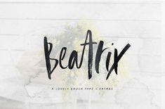 Beatrix Brush Font + Extras by Sinikka Li on @creativemarket