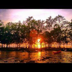 72 Rio Amazonas, Brazil - @rafaelsalman Webstagram