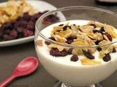 Yogur natural - MisThermorecetas
