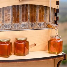 Flow Hive makes harvesting honey as simple as turning a tap. It's so much easier for the beekeeper and so much gentler on the bees. Hive Stand, Harvesting Honey, Beekeeping For Beginners, Bee Do, Bee Farm, Garden Animals, Bee Friendly, Bees Knees, Bee Keeping