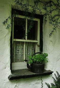 Windows and doors that talk to me Witch Cottage, Irish Cottage, Old Windows, Windows And Doors, Exterior Windows, Red Bench, Photos Originales, Window View, Window Dressings