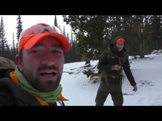 Hunting Snowshoe Hares with 22s - YouTube