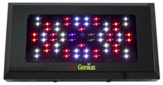 Special Offers - NEW Dirt Genius 200W High Output HO LED Grow Light Panel 3w Vegetation Veg/Clone - In stock & Free Shipping. You can save more money! Check It (May 04 2016 at 04:02PM) >> http://herbgardenplanters.net/new-dirt-genius-200w-high-output-ho-led-grow-light-panel-3w-vegetation-vegclone/
