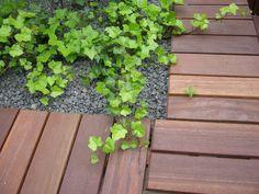 Osiedle mieszkaniowe Wzgórze Focha w Gdańsku Plants, Planters, Plant, Planting
