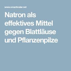 Natron als effektives Mittel gegen Blattläuse und Pflanzenpilze