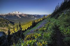 Glacier Peak Wilderness, North Cascades, Washington -- Photo by Andy Porter, taken 7-27-14 -- Sierra Club, Daily Ray of Hope, 4-26-16