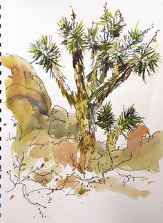 You can't look at a Joshua Tree without thinking of Dr. Landscape Tattoo, Landscape Sketch, Fantasy Landscape, Landscape Art, Desert Landscape, Tree Sketches, Drawing Sketches, Drawings, Sketching