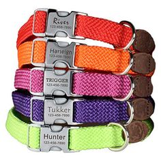 Personalized Buckle Dog Collars - Rolled Braided Collar