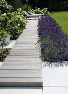 Back Garden Design, Backyard Garden Design, Terrace Garden, Back Gardens, Outdoor Gardens, Contemporary Garden, Outdoor Landscaping, Dream Garden, Garden Projects